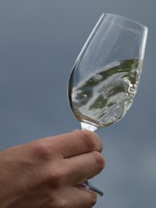 Organoleptic (sensory) evaluation of wine in the Republic of Croatia