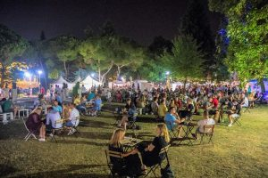 U Puli održan festival Vinski grad